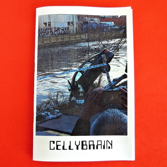 New issue of @cellybrain #cellybrain get on it zinekong.com